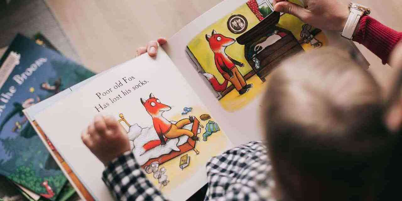 person-reading-a-book-1741230